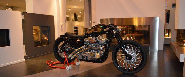 Harley Davidson Sportster Trailblazer